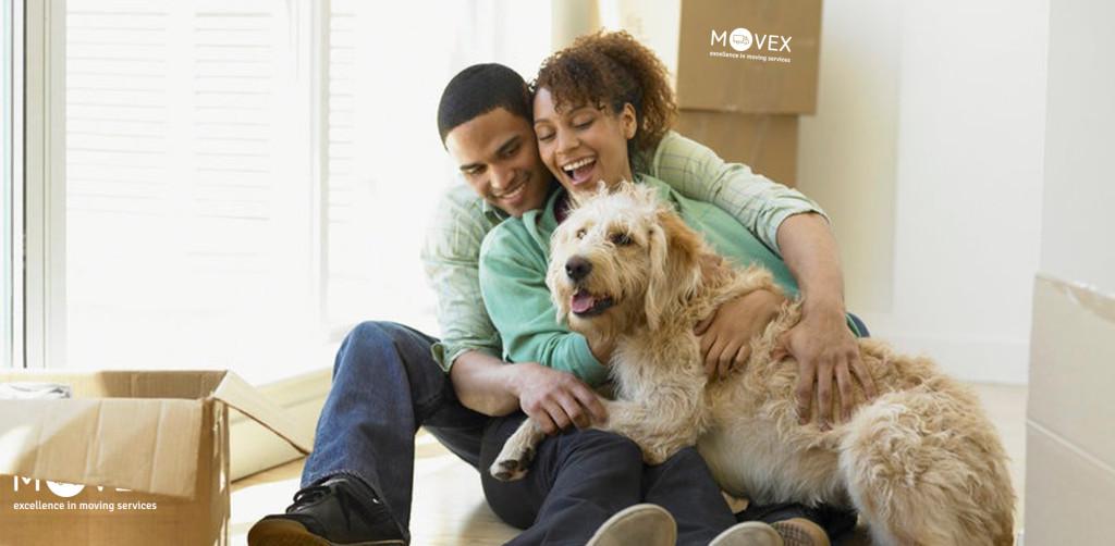 Blog_movex_ako sa sťahovať so psom